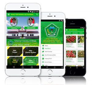 Mobile Apps - kab nduga